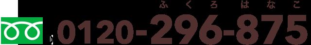0120-296-875